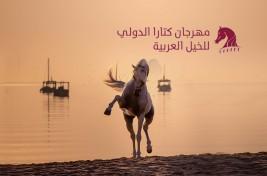 """الإقبال الكثيف استدعى تعديل الجدول الىأربعة أيام لبطولة """"تايتل شو"""" في مهرجان كتارا الدولي للخيل العربية"""