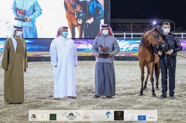 3 فضيات وبرونزية لمربط عجمان في بطولة الإمارات لمربي الخيول العربية 2021