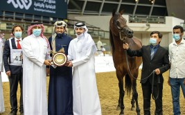النتائج النهائية لبطولة قطر المحلية الـ 23 لجمال الخيل العربية الأصيلة