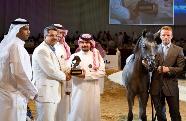 ختام «دولية» دبي للجواد العربي اليوم بـ «المسابقات الكبرى»