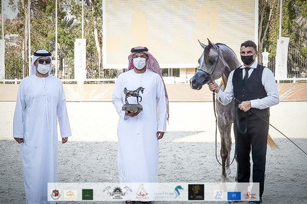نتائج اليوم الثاني لبطولة أبوظبي الدولية لجمال الخيل العربية 2021 – صور