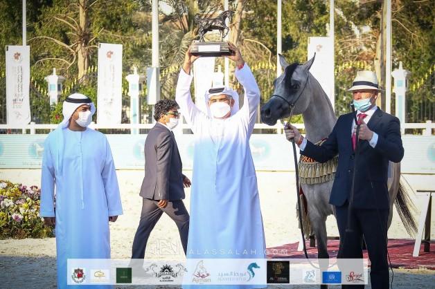 ذهبية وفضيتان للـ«الأريام» في بطولة أبوظبي الدولية لجمال الخيل العربية 2021