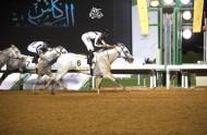 إسطبلات الخالدية تحافظ على كأس عبيه للخيول العربية