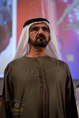 الإمارات تعد قانونا يجرّم استيراد واستخدام منشطات الخيول