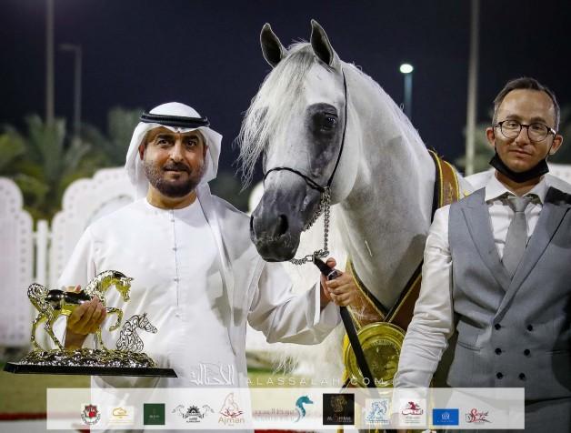 النتائج النهائية بالصور لمهرجان الشارقة الدولي 2021 الثاني والعشرون للجواد العربي