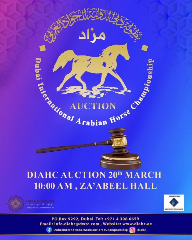 مزاد الخيول المصاحب لبطولة دبي الدولية يوم السبت 20 مارس