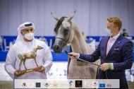 نتائج اليوم الأول لبطولة دبي الدولية للجواد العربي 2021