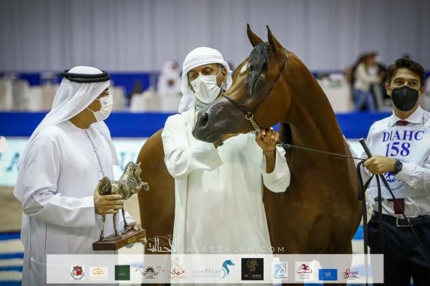 نتائج اليوم الثاني لبطولة دبي الدولية للجواد العربي 2021