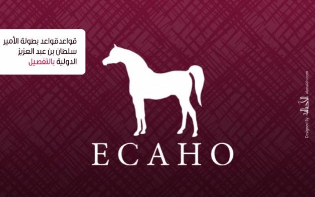 إضاءات على الكتاب الأزرق2020 للإيكاهو.. قواعد بطولة مهرجان الأمير سلطان بن عبد العزيز الدولي بالتفصيل