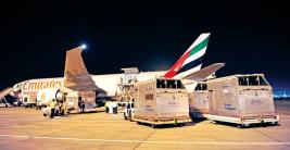 «الإمارات للشحن الجوي» تنقل عدد قياسياً من الخيول من مسقط إلى بريطانيا