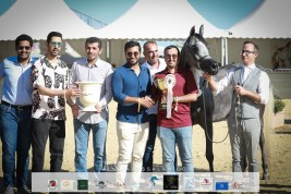نتائج اليوم الأول لبطولة منتون الدولية لجمال الخيل العربية 2021