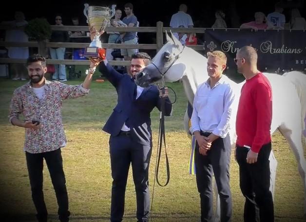 النتائج النهائية لبطولة بروجيز للخيل العربية الأصيلة 2021