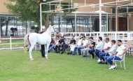الاتحاد الملكي ينظم دورة عارضي الخيل العربية المتقدمة يومي 3 و4 أكتوبر في قرية البحرين الدولية للقدرة