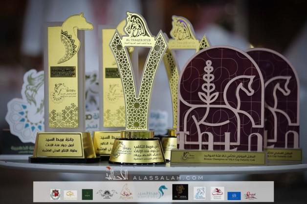 شكر وإشادة الى القائمين على أمر تنظيم النسخة العاشرة لبطولة الإنتاج المحلي للخيل العربية