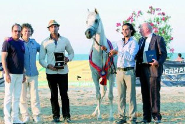 «جواندا أو إس» تحصد ذهبية بورتو لجمال الخيول