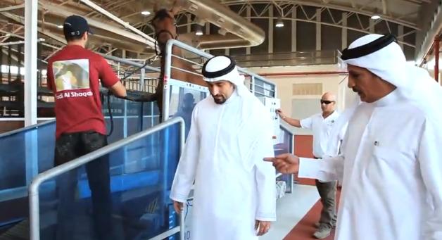 """العناية الفائقة للخيل العربية في الشقب قطر فاونديشن """"خواطر 8""""  فيديو"""