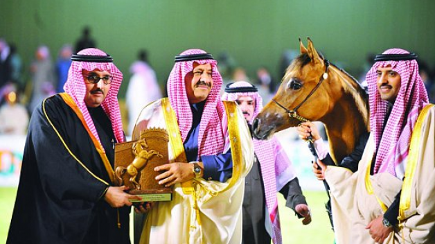 ٩٢ مالكاً بـ ١٣٠ من خيلهم العربية يشاركون في بطولة كأس الخالدية الثاني للمنتجين