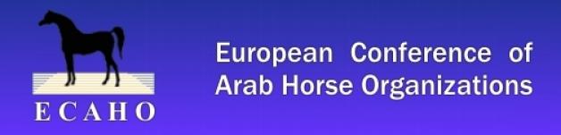 إيكاهو: تصحيح موعد إقامة بطولة القصيم وجدة لجمال الخيل العربية