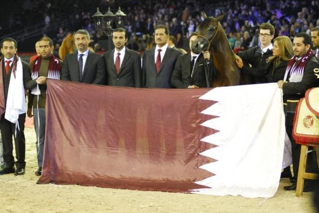 وادي الشقب وسلطان الزبارة أبطال العالم ٢٠١٢ لجمال الخيل العربية الأصيلة