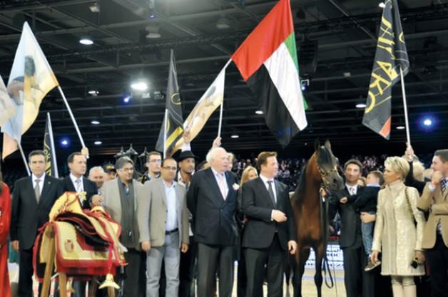 مربط دبي للخيل العربية الأصيلة يسجل بصمات ذهبية في عام ٢٠١٢