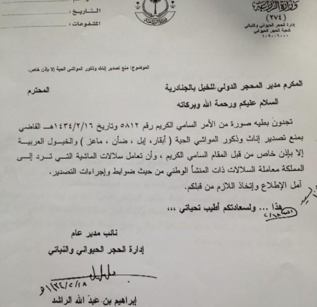 منع تصدير إناث وذكور الخيل العربية من المملكة