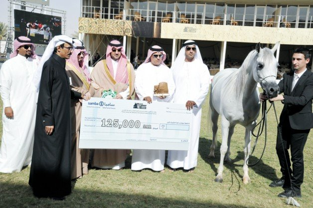 «إف تي شيلة» لمربط دبي تكتسح منافساتها
