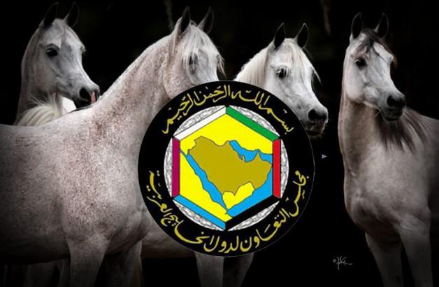 مبادرة قطرية لإقامة كأس الخليج لجمال الخيل العربية الاصيلة