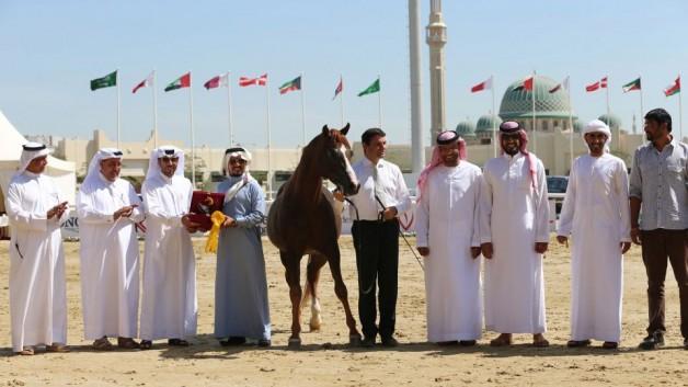 مربط التميمي يواصل نجاحاته في المشاركات الدولية ويحقق ثلاث مراكز في قطر