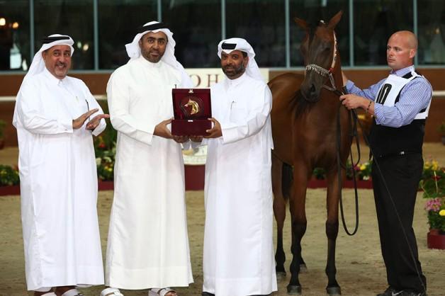 لأول مرة بالوطن العربي مسابقة جمال خاصة لأهالي دولة قطر