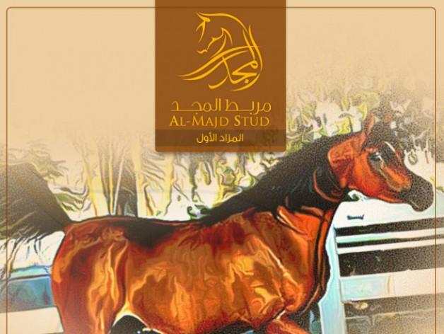 قائمة الخيل المعروضة في مزاد مربط المجد الأول للخيل العربية