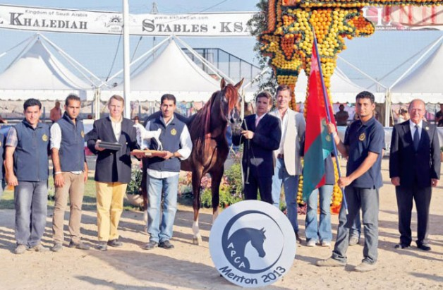 الخيالة السلطانية تواصل منافساتها الدولية وفي منتون «بيارد» يفوز باللقب الفضي للأفحل